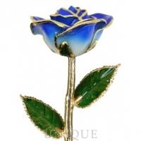 Living Gold Roses 2-Tone Dark Blue Rose Trimmed in 24k Gold (September)