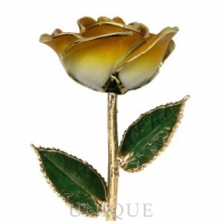 Living Gold Roses 2-Tone Orange Rose Trimmed in 24k Gold (June)