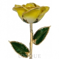 Living Gold Roses 2-Tone Yellow Rose Trimmed in 24k Gold (November)
