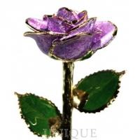 Living Gold Roses Lavender Sparkle Rose Trimmed in 24k Gold
