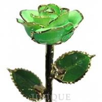 Living Gold Roses Light Green Sparkle Rose Trimmed in 24k Gold