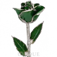 Living Gold Roses Dark Green Rose Trimmed in Platinum (May)