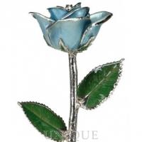 Living Gold Roses Light Blue Rose Trimmed in Platinum (March)