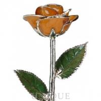 Living Gold Roses Orange Rose Trimmed in Platinum (June)