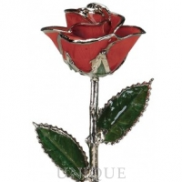 Living Gold Roses Red Rose Trimmed in Platinum (January)