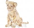 SCS Lion Cub