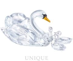 Swarovski Crystal SCS Jubilee Edition 2017 Swans