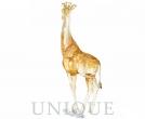 SCS A.E 2018 Giraffe Mudiwa