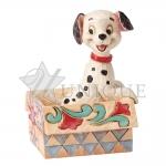 Mini Lucky in a box