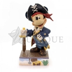 Mickey Pirate