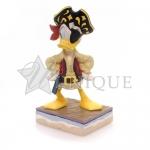 Donald Pirate