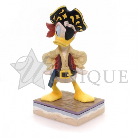 Donald Pirate