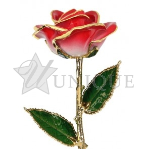 2-Tone Bright Red Rose Trimmed in 24k Gold (July)