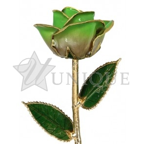 2-Tone Light Green Rose Trimmed in 24k Gold (August)