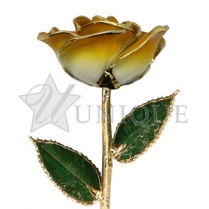 2-Tone Orange Rose Trimmed in 24k Gold (June)