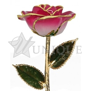 2-Tone Pink Rose Trimmed in 24k Gold (December)