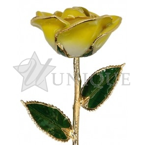 2-Tone Yellow Rose Trimmed in 24k Gold (November)