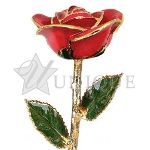 Bright Red Rose Trimmed in 24k Gold (July)