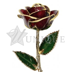Burgundy Rose Trimmed in 24k Gold (February)