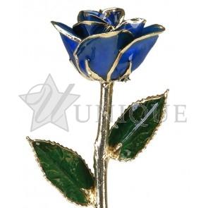Dark Blue Rose Trimmed in 24k Gold (September)