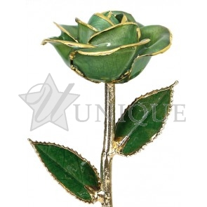 Light Green Rose Trimmed in 24k Gold (August)