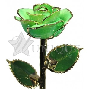 Light Green Sparkle Rose Trimmed in 24k Gold