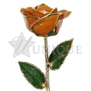 Orange Rose Trimmed in 24k Gold (June)