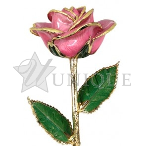 Pink Rose Trimmed in 24k Gold (December)