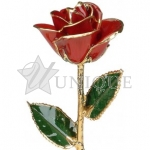 Red Rose Trimmed in 24k Gold (January)