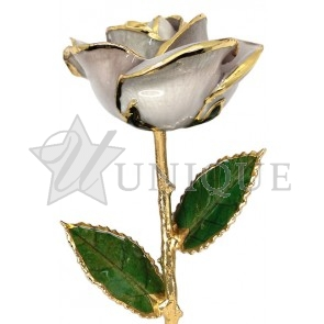 Pearl White Rose Trimmed in 24k Gold (April)