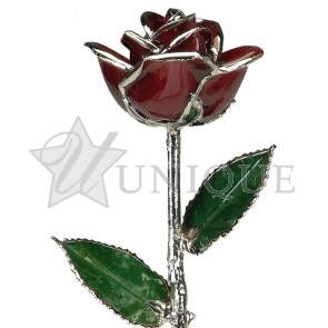 Burgundy Rose Trimmed in Platinum (February)