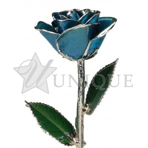 Dark Blue Rose Trimmed in Platinum (September)