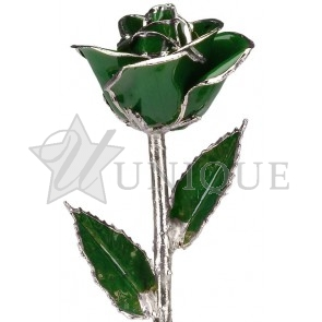 Dark Green Rose Trimmed in Platinum (May)