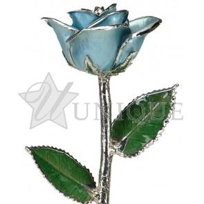 Light Blue Rose Trimmed in Platinum (March)