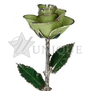 Light Green Rose Trimmed in Platinum (August)