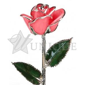 Pink Rose Trimmed in Platinum (December)