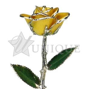 Yellow Rose Trimmed in Platinum (November)