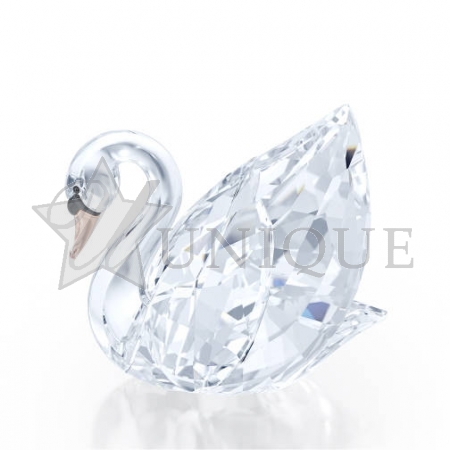 Swan, medium