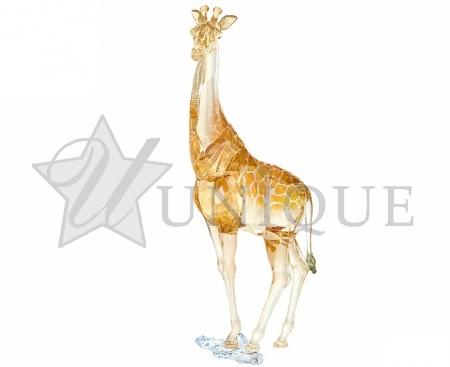 SCS Annual Edition 2018 Giraffe Mudiwa