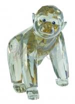 Gorilla Cub