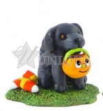 Puppy Chow Black