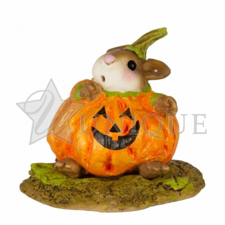 Plumpkin